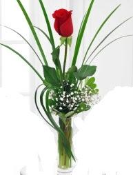 Cam içerisinde 1 kırmızı gül  Tunceli çiçek servisi , çiçekçi adresleri