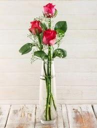 Cam içerisinde 3 kırmızı gül  Tunceli yurtiçi ve yurtdışı çiçek siparişi