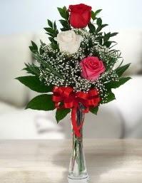 Camda 2 kırmızı 1 beyaz gül  Tunceli çiçek yolla , çiçek gönder , çiçekçi