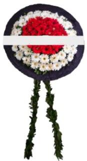 mozele çiçeği  Tunceli internetten çiçek siparişi