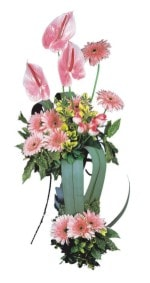 Tunceli uluslararası çiçek gönderme  Pembe Antoryum Harikalar Rüyasi