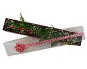 Tunceli İnternetten çiçek siparişi  3 adet gül.kutu yaldizlidir.