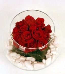 Cam fanusta 11 adet kırmızı gül  Tunceli kaliteli taze ve ucuz çiçekler