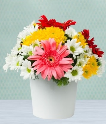 Seramik Vazoda Gelbera ve Papatya  Tunceli kaliteli taze ve ucuz çiçekler
