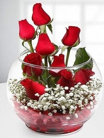 Kırmızı Mutluluk fanusta 9 kırmızı gül  Tunceli çiçek yolla