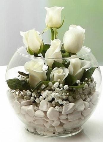 Beyaz Mutluluk 9 beyaz gül fanusta  Tunceli çiçek yolla