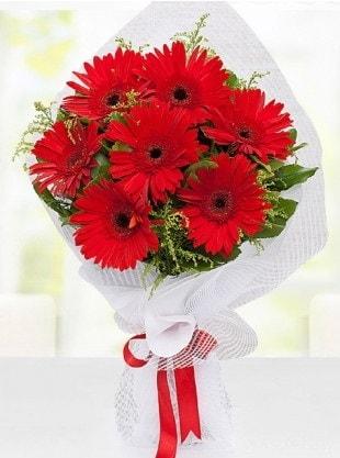 Kırmızı Gelbera Buketi  Tunceli çiçek satışı