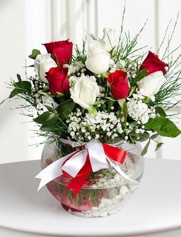 Aşk Küresi  5 beyaz 5 kırmızı gül fanusta  Tunceli çiçek gönderme