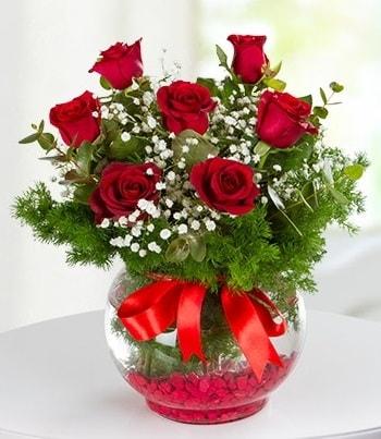 fanus Vazoda 7 Gül  Tunceli online çiçekçi , çiçek siparişi