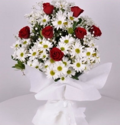 7 adet kırmızı gül ve papatyalar krizantem  Tunceli çiçek gönderme