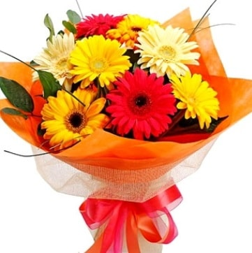 9 adet karışık gerbera buketi  Tunceli online çiçekçi , çiçek siparişi
