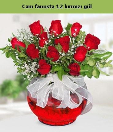 Cam içerisinde 12 adet kırmızı gül  Tunceli çiçek gönderme