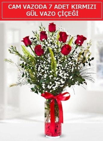 Cam vazoda 7 adet kırmızı gül çiçeği  Tunceli çiçek servisi , çiçekçi adresleri
