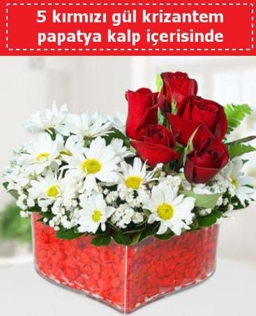mika kalp içerisinde 5 kırmızı gül papatya  Tunceli kaliteli taze ve ucuz çiçekler