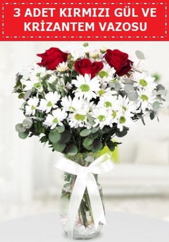3 kırmızı gül ve camda krizantem çiçekleri  Tunceli kaliteli taze ve ucuz çiçekler