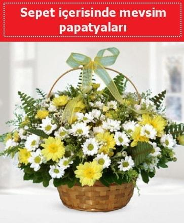 Sepet içerisinde mevsim papatyaları  Tunceli çiçek yolla , çiçek gönder , çiçekçi