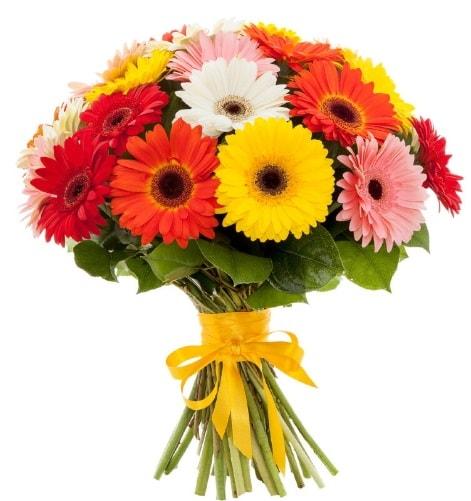 Gerbera demeti buketi  Tunceli yurtiçi ve yurtdışı çiçek siparişi