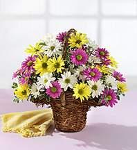 Tunceli çiçekçi telefonları  Mevsim çiçekleri sepeti
